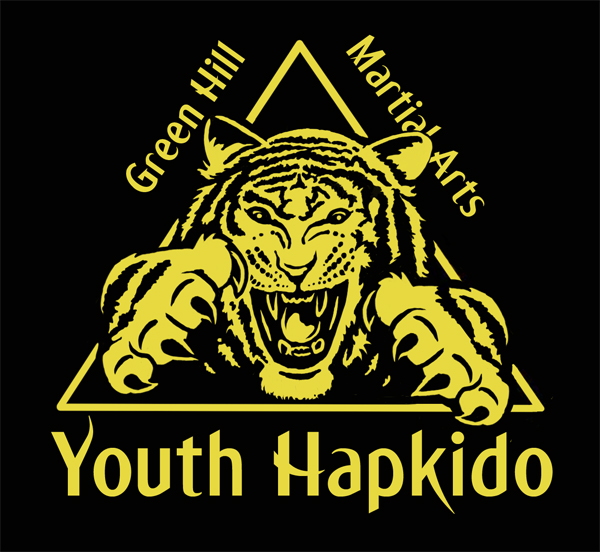Youth Hapkido Green Hill Martial Arts